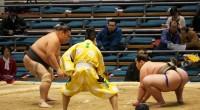 Wer an Japan denkt, hat in seinem Assoziationsrepertoire meist auch Sumo parat. Die riesigen, zugegebenermaßen sehr dicken Männer in knappen Hosen, hat jeder schon einmal in den Medien gesehen. Wer […]
